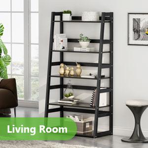 living room storage shelf