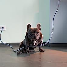 pet cord protector