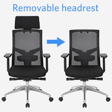 Removable Headrest