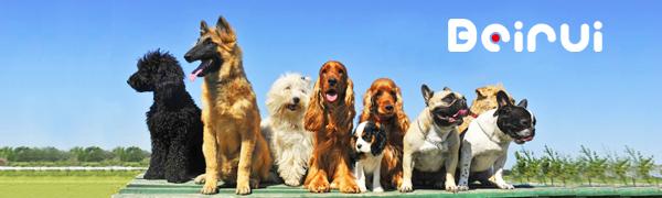 Amazon Com Beirui Sharp Spiked Studded Dog Collar Stylish