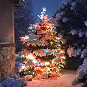 25 Ft Outdoor Extension Cord Multiple Outlets for Christmas Tree Lights