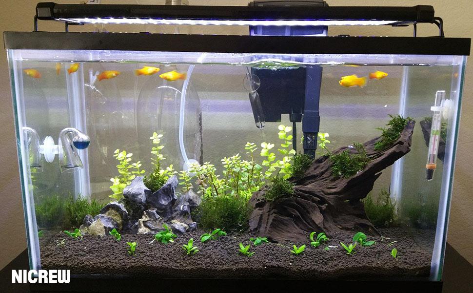 Nicrew classicled aquarium light fish tank for Fish tank riddle