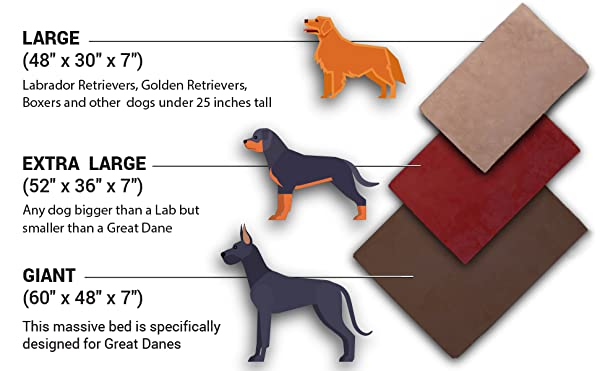 Dog Bed Size For Large Dogs