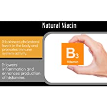 Niacin Vitamin B3 supports blood circulation, skin function, nutrient absorption, cognitive function