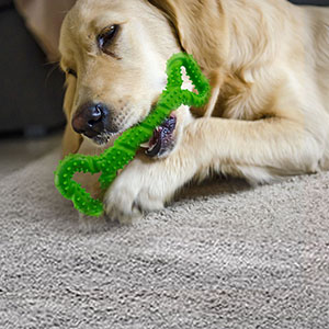 indestructible dog toy, interactive dog toy, rubber dog toy, tough dog toy,  xlarge dog toy