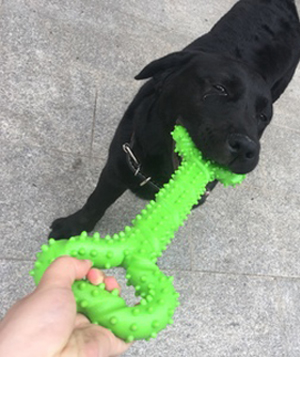 durable dog toy,indestructible dog toy,dog toys for large dogs,chew toys for aggressive chewers