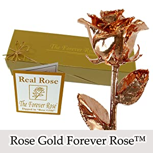 Amazon 24k gold dipped real rose wgold gift box by the the original forever rose is also available in the following alternate finishes mightylinksfo
