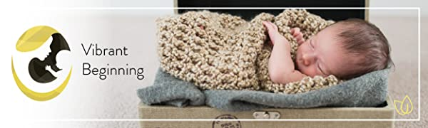 Vibrant Beginning Logo next to picture of newborn swaddled in a knit blanket
