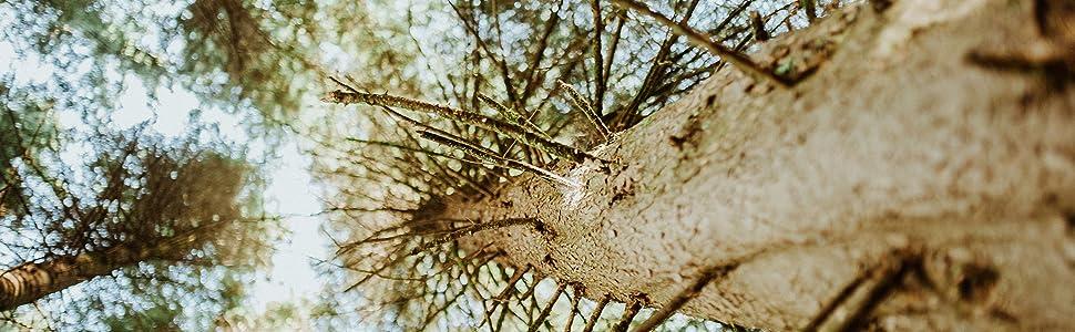 tree, all-natural, locally produced, jerky