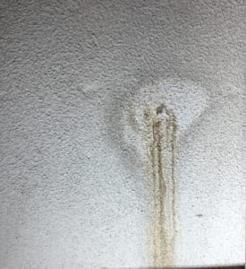 Compressed Swell Plug Basement Tie Rod Hole Sealing