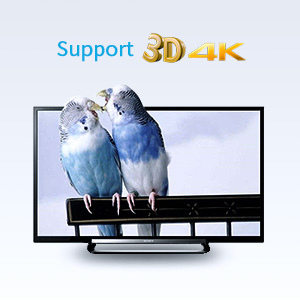 Tendak 1X2 4K HDMI Splitter with HDMI Audio Extractor Optical and 5582721349