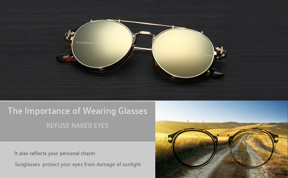 74de150622 Amazon.com  Dollger Clip On Double Lens Round Sunglasses Steampunk ...