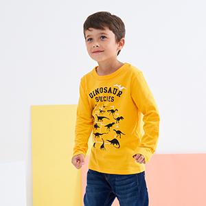 kids dinosaur T shirts