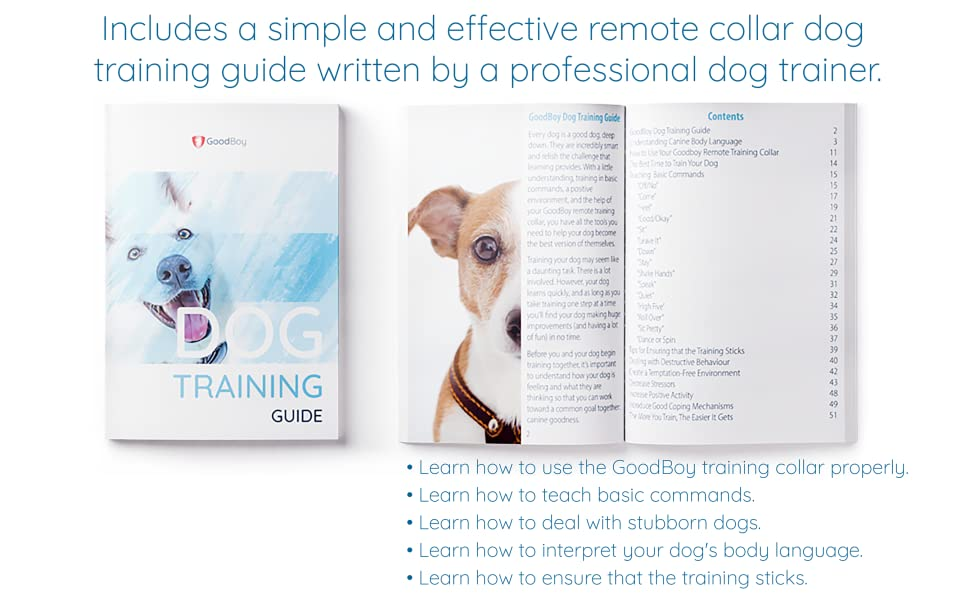 Remote training collar for small dogs