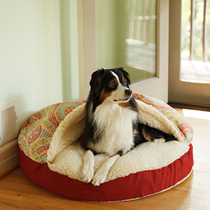 Snoozer Pet Products, Cozy Cave, Orthopedic, Support, Older Dogs, Memory Foam, Sherpa, Nesting