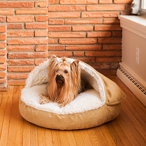 Snoozer Pet Products, Cozy Cave, Durable, Bright, Home Design,