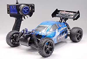 Exceed RC 1/10 2.4Ghz Electric SunFire RTR Off Road Buggy (Blue)