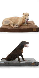Orthopedic Memory Foam Pet/Dog Bed, Orthopedic memory foam dog bed, Orthopedic memory foam dog bed, Cat bowl, Cat toy