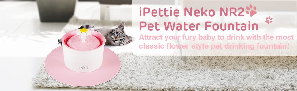 Amazon.com: IPETTIE Neko NS/NR Fuente de agua potable para ...