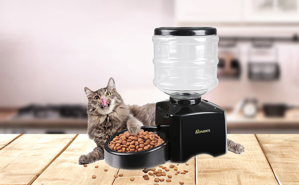 automatic catspad has ces app with invention the deserves invented your pussy somebody cat is feeder