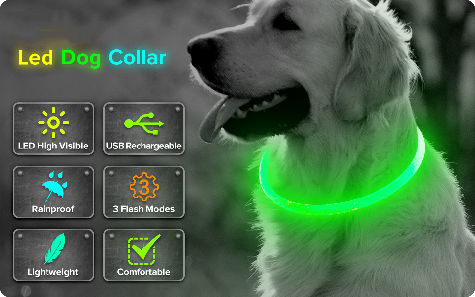 LED Dog Collar (1) - pugandhoney.com
