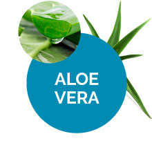 Aloe Vera Mens Fiber Supplement