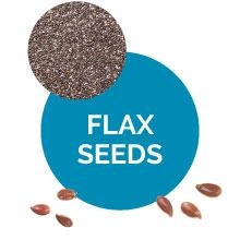 Flax Seeds Mens Fiber Supplement