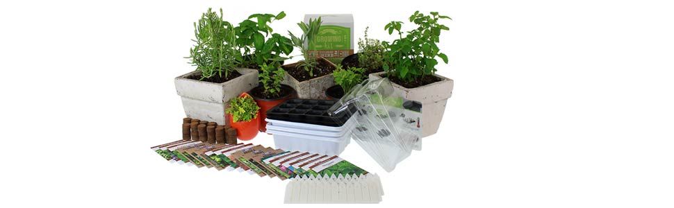 All items included with culinary seed starter kit premium against transplanted herbs