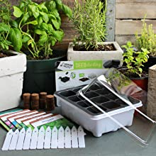 All items included with kit set against transplanted herbs in containers