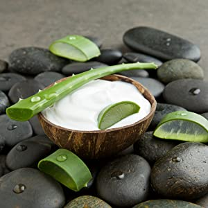 Organic Advanced Routine 4PC Face Scrub Set - Bed & Bath