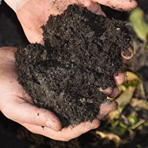 Wild Soil