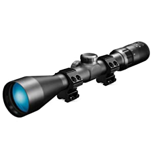 11mm mount with scope