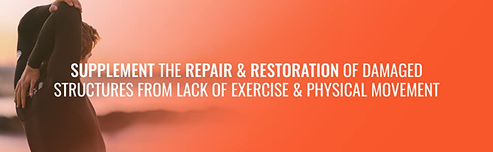 Supplement the Repair and Restoration of Damaged Structures from Lack of Exercise & Physical Movemen