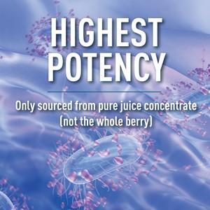 ellura cranberry supplement