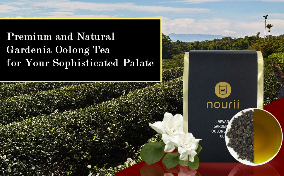 Premium and Natural Gardenia Oolong Tea for Your Sophisticated Palate