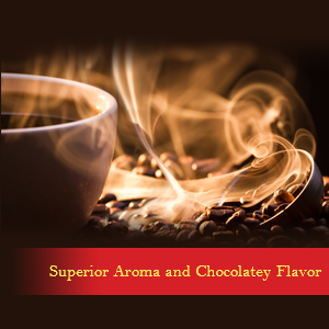 Superior Aroma and Chocolatey Flavor