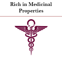Rich in Medicinal Properties