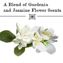 A Blend of Gardenia and Jasmine Flower Scents