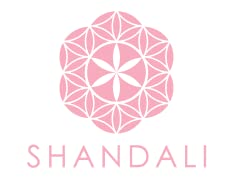 2 Shandali Hot Yoga Towel  Stickyfiber Standard ForgetMeNot