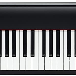 Amazon Com Roland Digital Piano Black Fp 30 Bk Musical Instruments