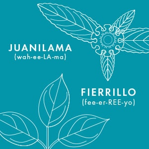 Thrive Natural Care Shave Oil - Juanilama - Fierrillo