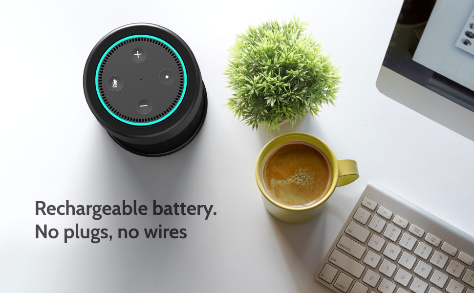 Portable Speaker For Echo Dot
