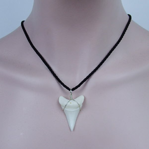 Amazon gemshark real shark tooth necklace great white huge this shark tooth necklace mainly sell the pendant only the necklace rope is for free this pendant core diameter is 5 mm you can use your other favarite aloadofball Gallery