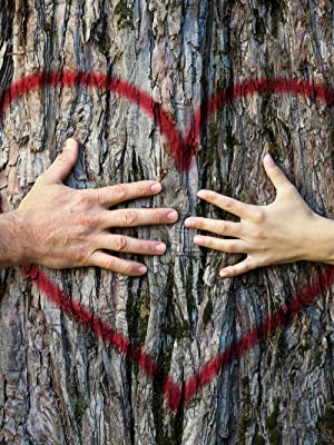 Earth's Wisdom Vegan Coenzyme Q10 CoQ10 supports heart health