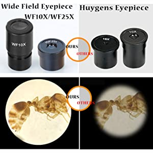 Wide Field View of Eyepiece