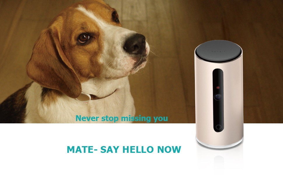PETKIT has been committed to provide products that are good for pets physical and mental health, following PETKIT P2 Pet activity tracker, PETKIT smart pet ...