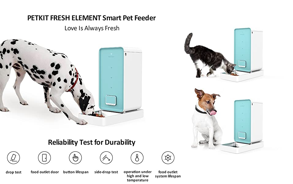 fi read smartfeeder must review smart programmable automatic wi feeder pet hoison complete