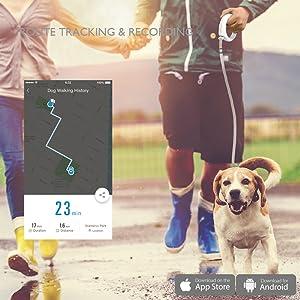 petkit dog leash