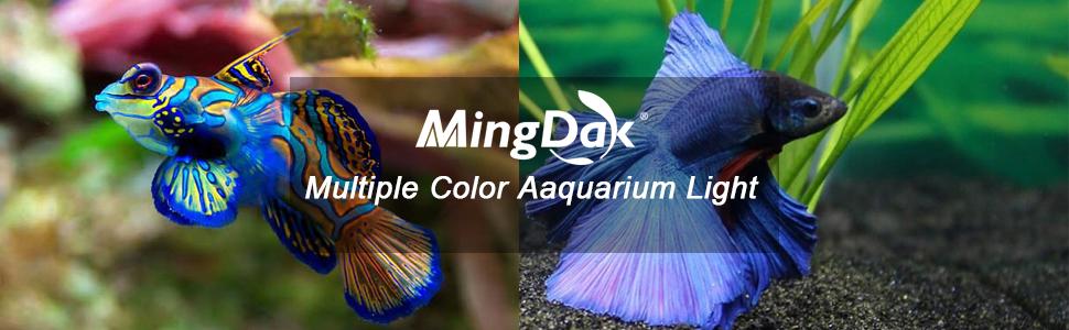 multiple color aquarium light
