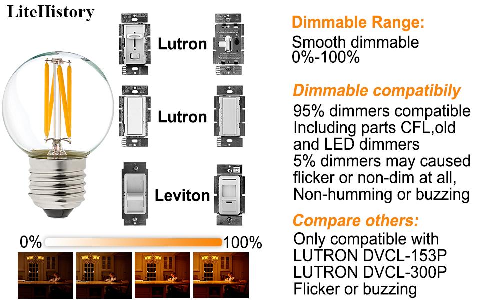 g16.5 led bulb